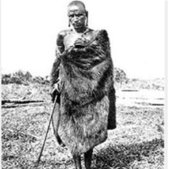 Koitalel arap Samoei